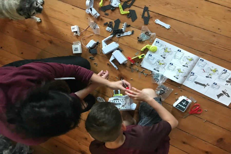 7 fun STEM activities for the whole family. Because we all need STEM, not just the kids.
