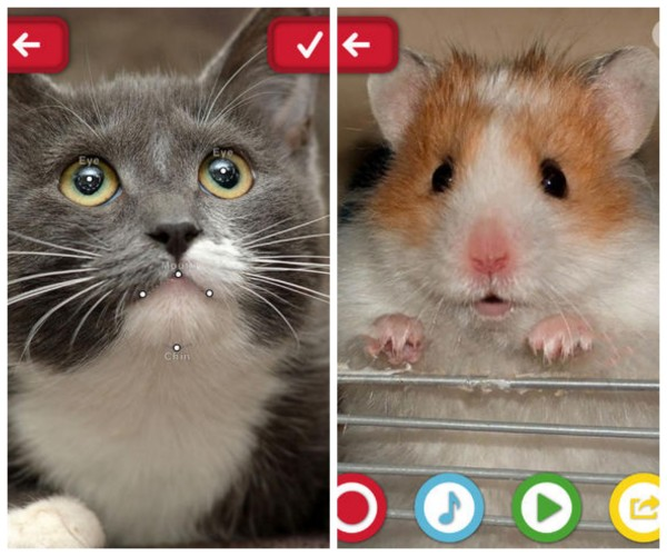 Funny pet apps for pet owners or kids who just have to settle for the virtual kinds.
