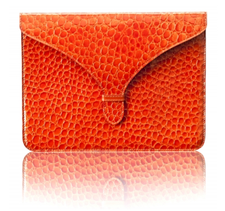 The hottest fall clutch for your iPad 2
