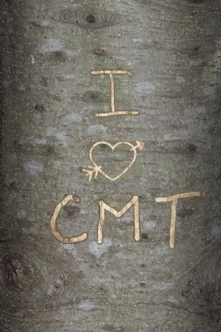 Spare a tree by carving your Valentine's initials virtually