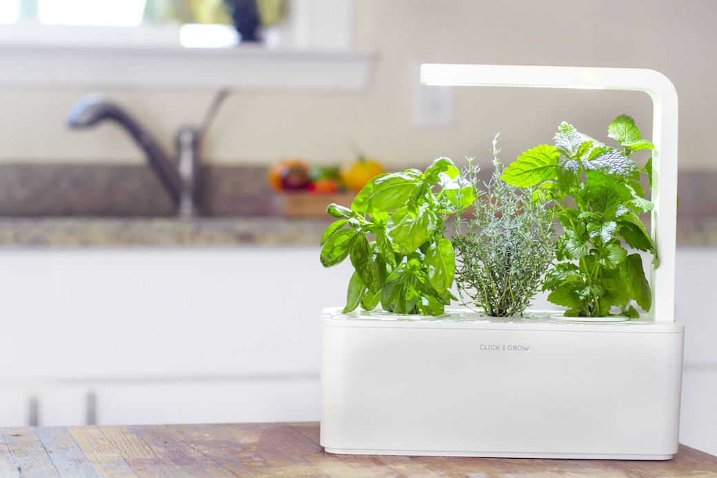 An indoor herb garden inspired by NASA technology. Rocket science degree not required.