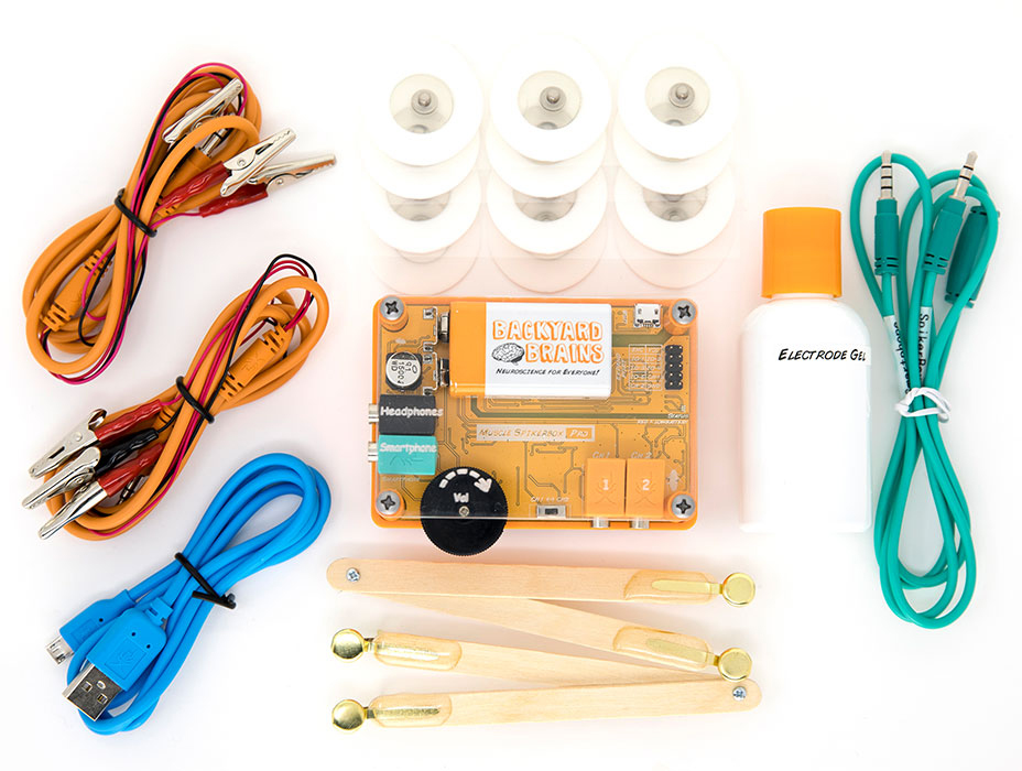 The Muscle Spikerbox Kit from Backyard Brains