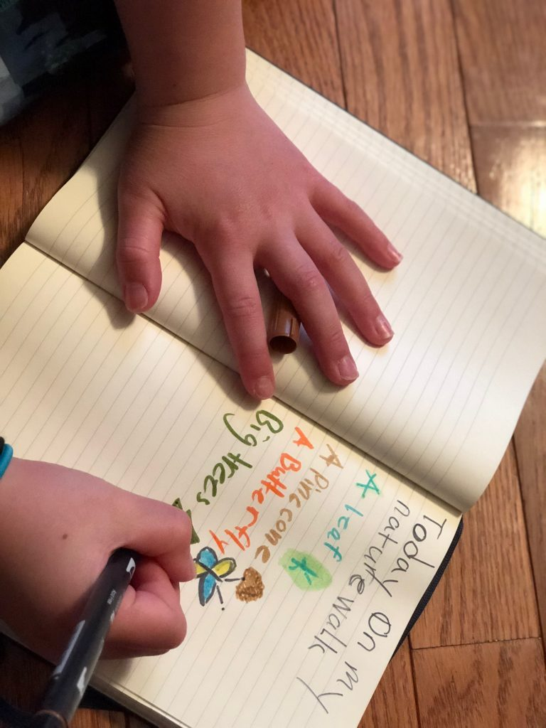 Science Guide for Grade Schoolers: Ways to create and use a science journal | Cool Mom Tech