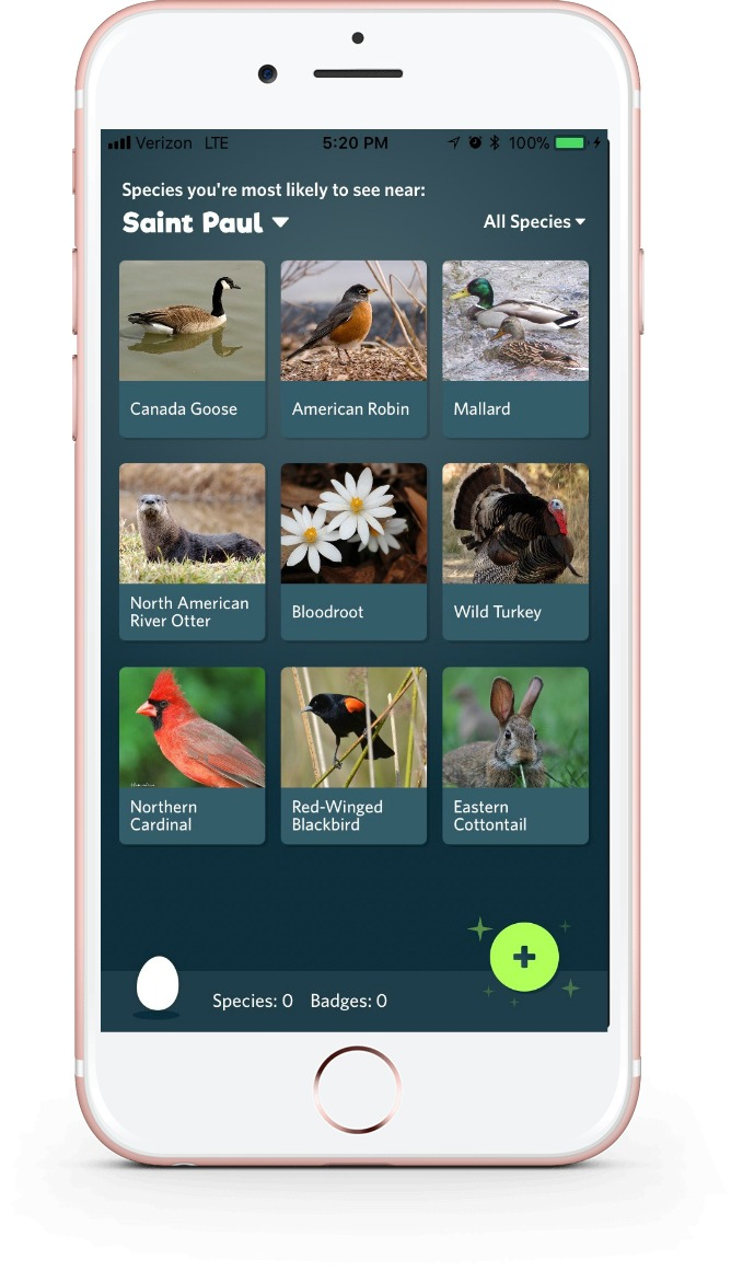 See what species are nearby, with the Seek app from iNaturalist