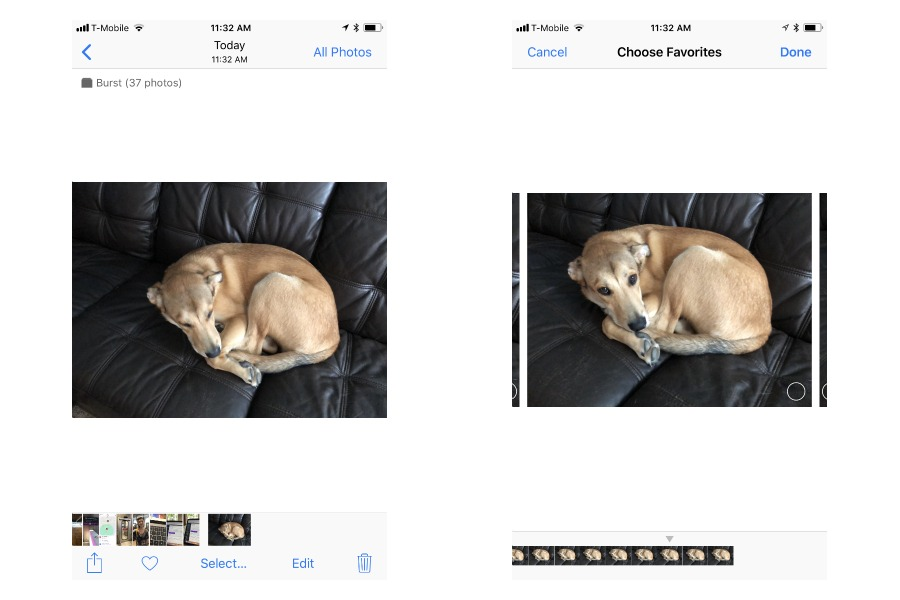 Burst mode is the iPhone camera feature every parent should be using.