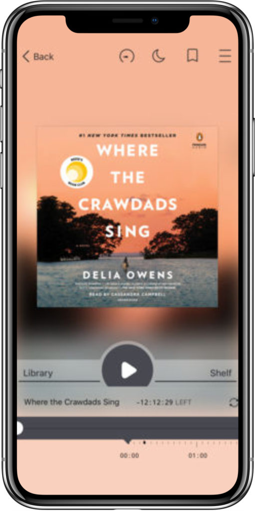 Free audiobook apps: Use Libby to rent from multiple libraries in one place.