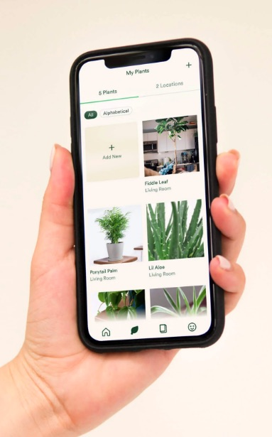 Keep track of your plants with the Vera from Bloomscape gardening app