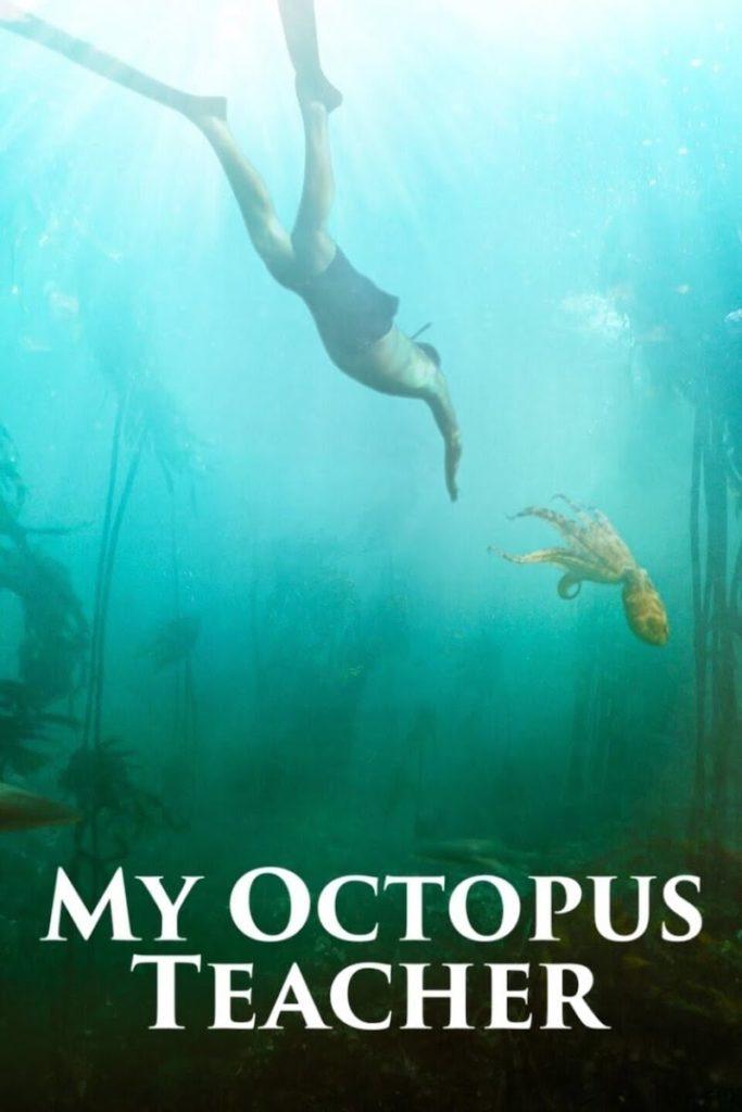 Where to stream My Octopus Teacher   2021 Oscar best documentary feature film nominees